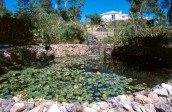 garden design - pond-algarve001