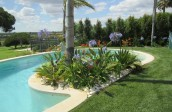garden design - pool-algarve002