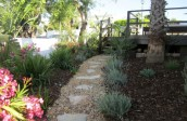 garden design - soft landscaping-algarve001