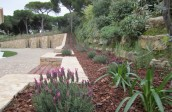 garden design - soft landscaping-algarve002
