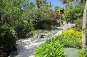 garden design - soft landscaping-algarve007