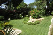 garden design - soft landscaping-algarve008