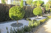 landscaping-algarve-06