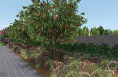 Sagres landscape garden design