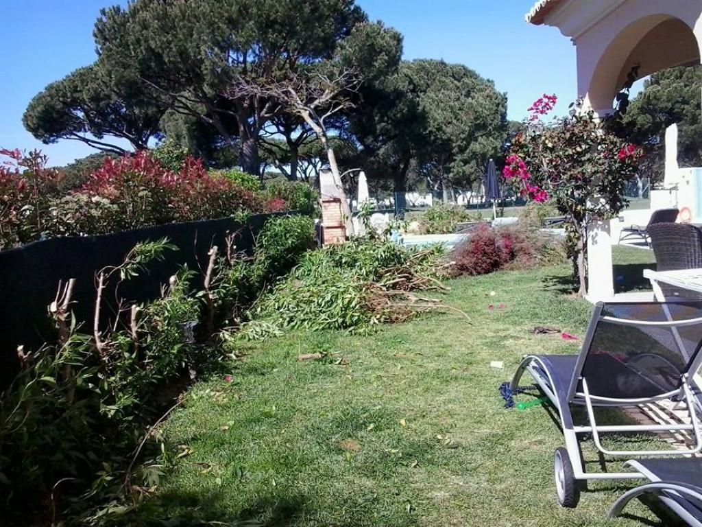 landscaping design u0026 calçada terrace
